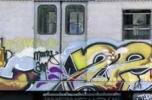 train_main_marezeph