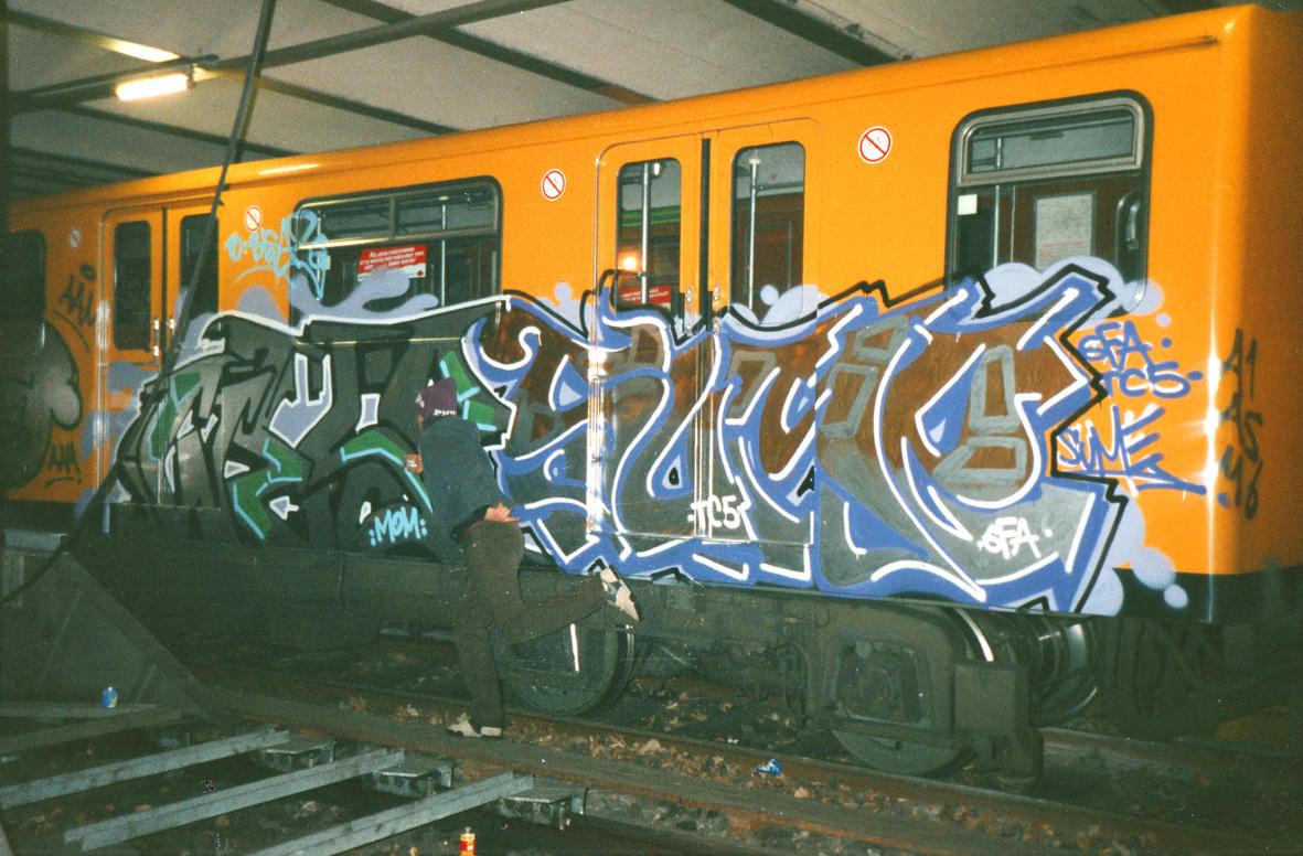 Wesp-SumebyPoet-train