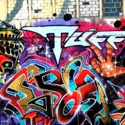 Cop81, Somey, Drik wall